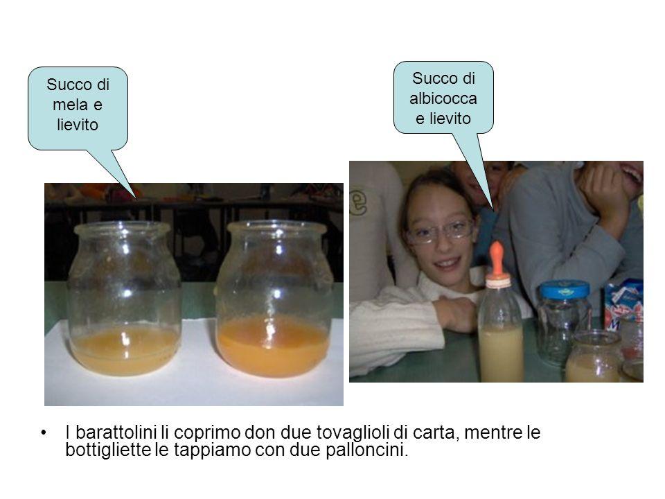 Succo di mela e lievito Succo di albicocca e lievito I barattolini li coprimo don due tovaglioli di carta, mentre le bottigliette le tappiamo con due palloncini.