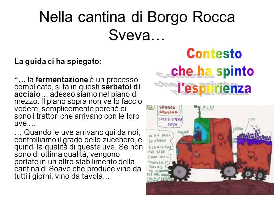 Nella cantina di Borgo Rocca Sveva… La guida ci ha spiegato: … la fermentazione è un processo complicato, si fa in questi serbatoi di acciaio… adesso siamo nel piano di mezzo.