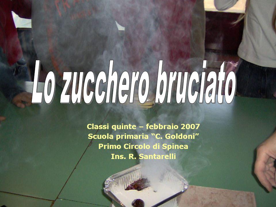 Classi quinte – febbraio 2007 Scuola primaria C. Goldoni Primo Circolo di Spinea Ins. R. Santarelli