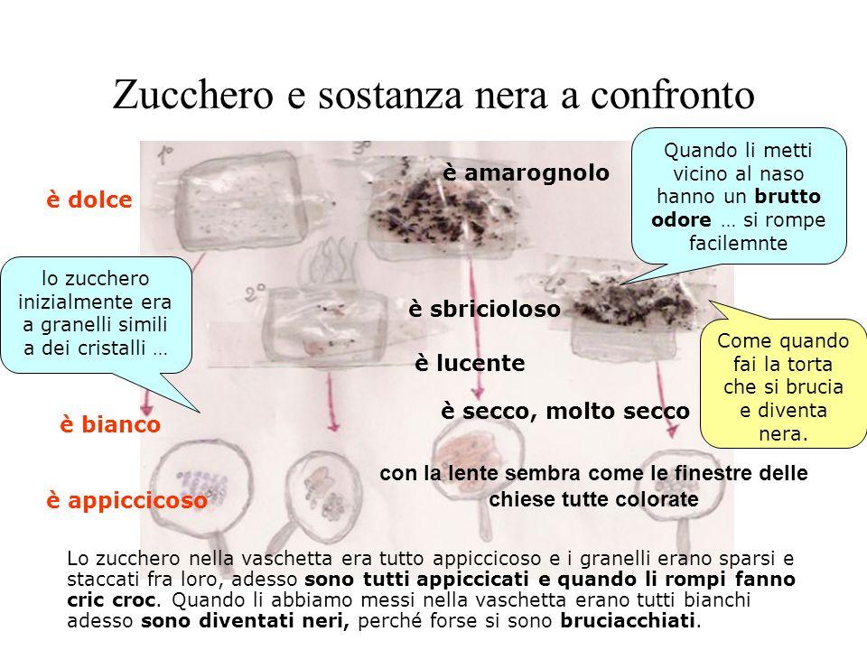 Zucchero e sostanza nera a confronto Lo zucchero nella vaschetta era tutto appiccicoso e i granelli erano sparsi e staccati fra loro, adesso sono tutt