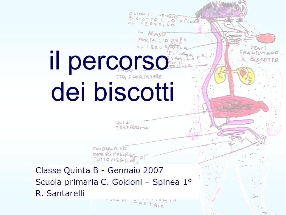 il percorso dei biscotti Classe Quinta B - Gennaio 2007 Scuola primaria C. Goldoni – Spinea 1° R. Santarelli