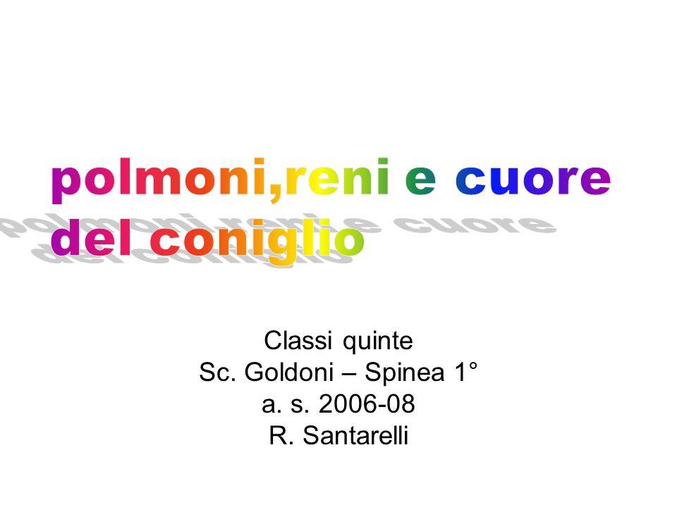 Classi quinte Sc. Goldoni – Spinea 1° a. s. 2006-08 R. Santarelli