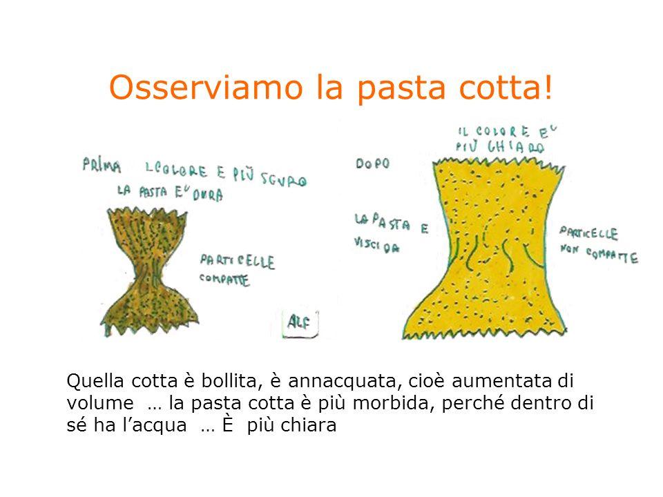 Osserviamo la pasta cotta! Quella cotta è bollita, è annacquata, cioè aumentata di volume … la pasta cotta è più morbida, perché dentro di sé ha lacqu
