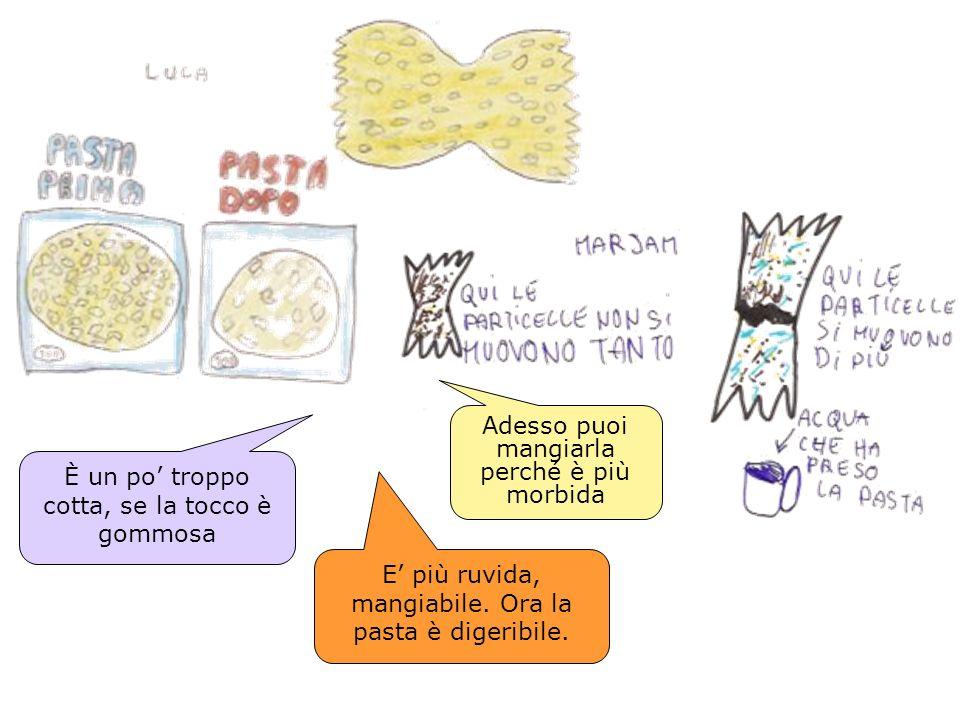 E più ruvida, mangiabile. Ora la pasta è digeribile. Adesso puoi mangiarla perché è più morbida È un po troppo cotta, se la tocco è gommosa