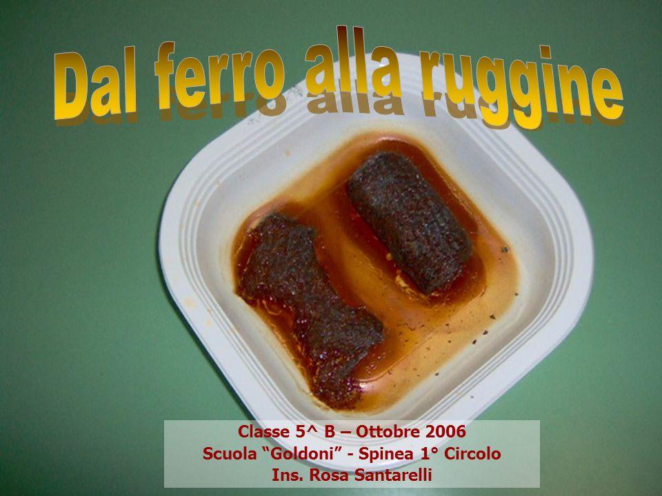 Classe 5^ B – Ottobre 2006 Scuola Goldoni - Spinea 1° Circolo Ins. Rosa Santarelli