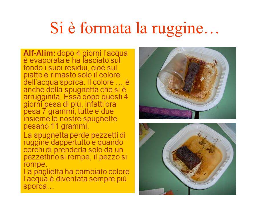 Si è formata la ruggine… Alf-Alim: dopo 4 giorni lacqua è evaporata e ha lasciato sul fondo i suoi residui, cioè sul piatto è rimasto solo il colore d