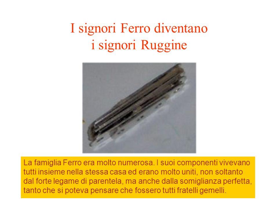 I signori Ferro diventano i signori Ruggine La famiglia Ferro era molto numerosa. I suoi componenti vivevano tutti insieme nella stessa casa ed erano