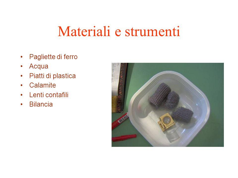 Materiali e strumenti Pagliette di ferro Acqua Piatti di plastica Calamite Lenti contafili Bilancia