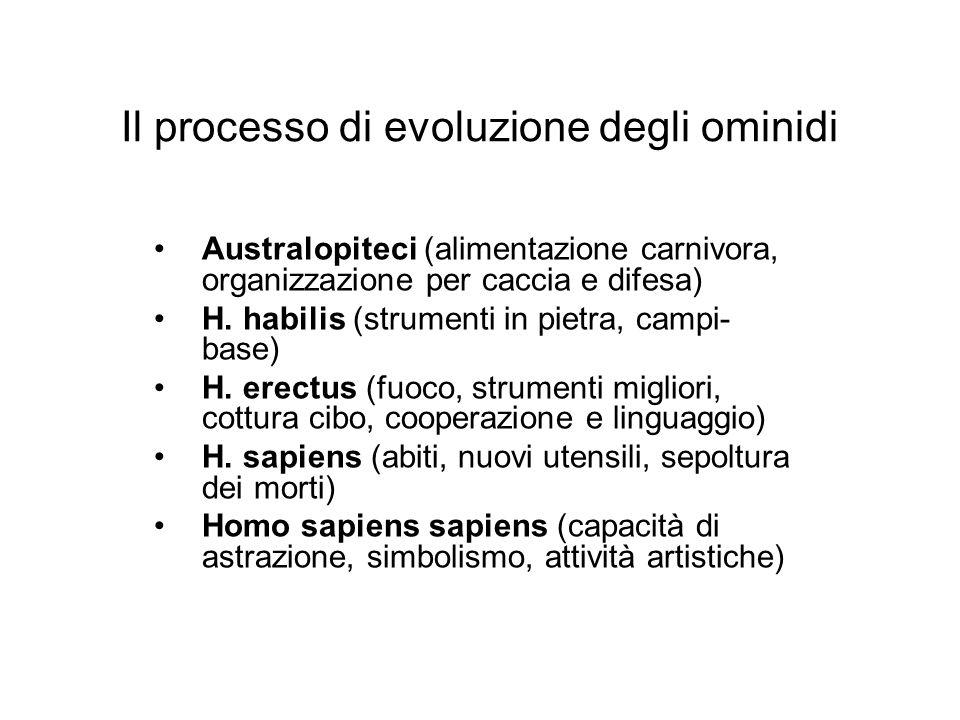 Il processo di evoluzione degli ominidi Australopiteci (alimentazione carnivora, organizzazione per caccia e difesa) H. habilis (strumenti in pietra,
