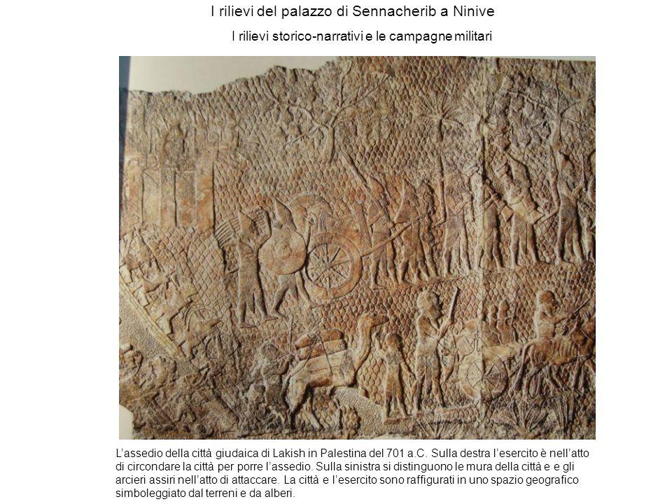 I rilievi del palazzo di Sennacherib a Ninive I rilievi storico-narrativi e le campagne militari Lassedio della città giudaica di Lakish in Palestina