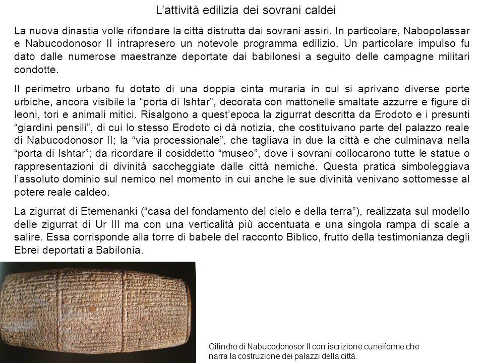 Lattività edilizia dei sovrani caldei Cilindro di Nabucodonosor II con iscrizione cuneiforme che narra la costruzione dei palazzi della città. La nuov