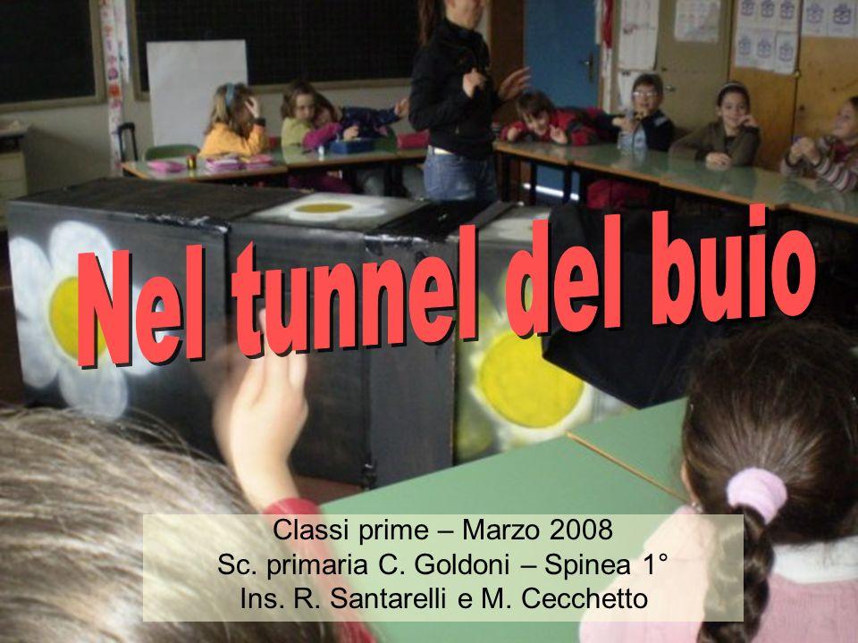 Classi prime – Marzo 2008 Sc. primaria C. Goldoni – Spinea 1° Ins. R. Santarelli e M. Cecchetto