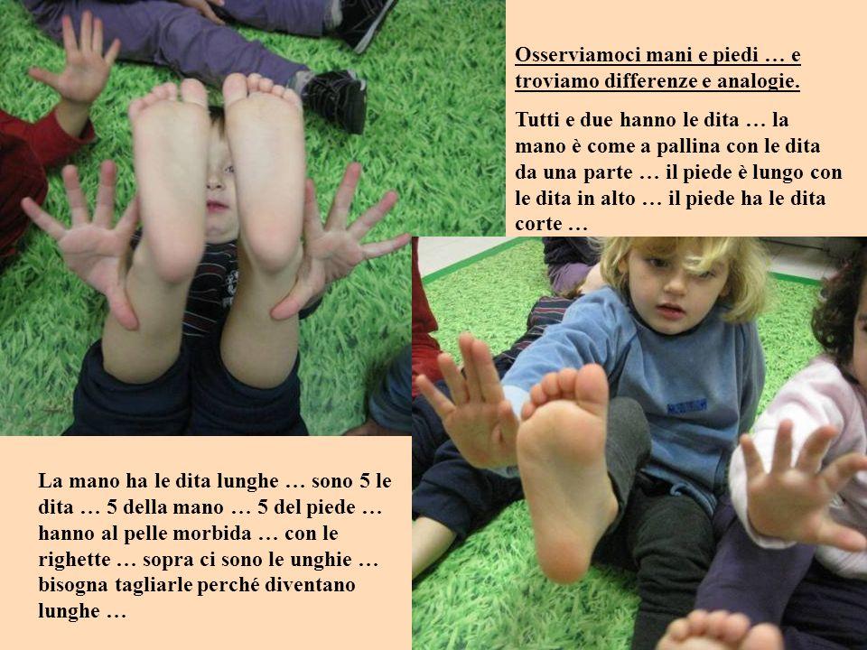 Osserviamoci mani e piedi … e troviamo differenze e analogie.