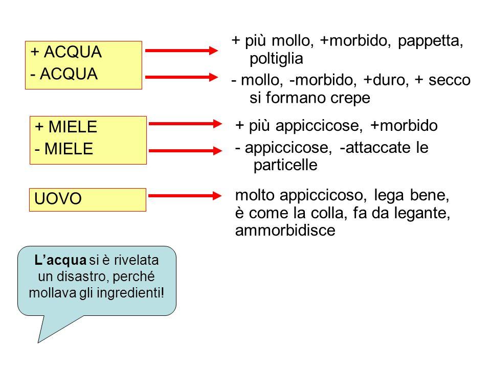 + ACQUA - ACQUA + più mollo, +morbido, pappetta, poltiglia - mollo, -morbido, +duro, + secco si formano crepe + MIELE - MIELE + più appiccicose, +morb
