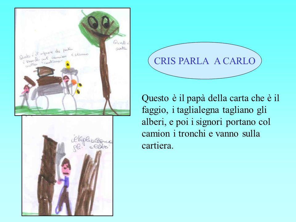 CRIS PARLA A CARLO Questo è il papà della carta che è il faggio, i taglialegna tagliano gli alberi, e poi i signori portano col camion i tronchi e van