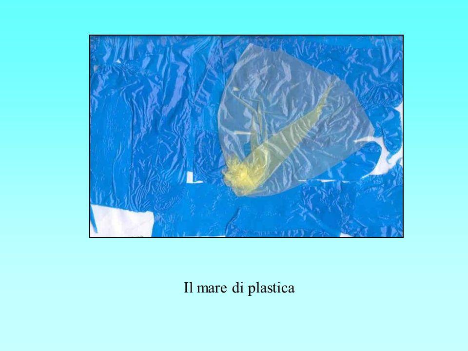 Il mare di plastica