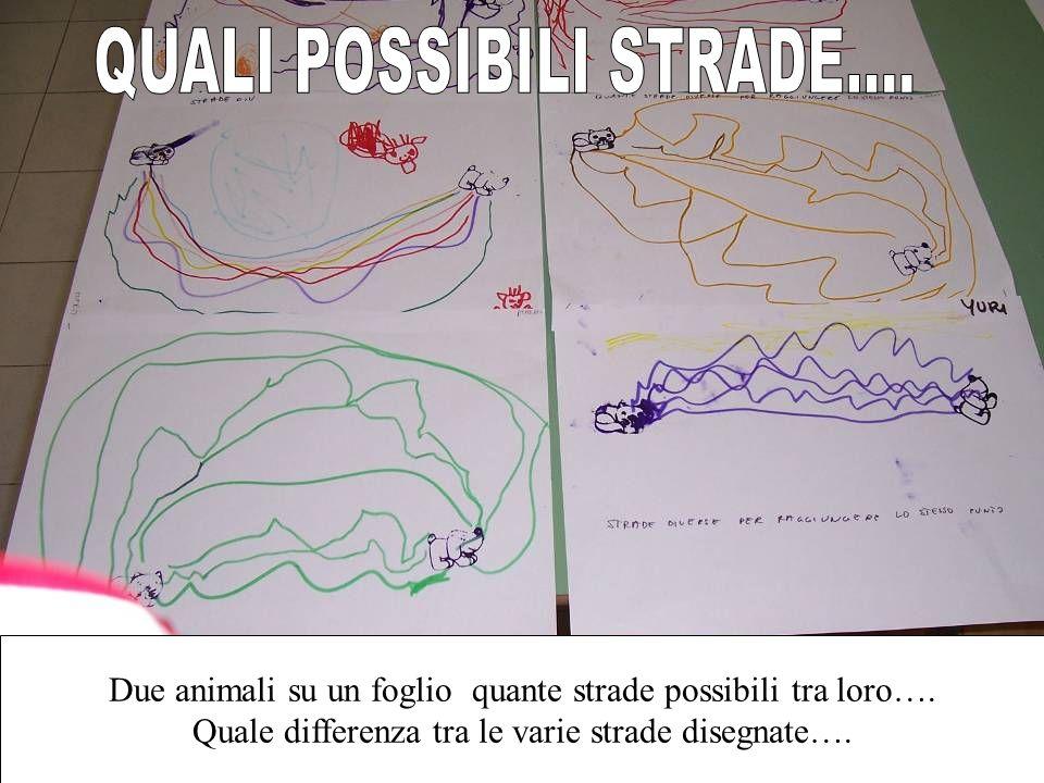Due animali su un foglio quante strade possibili tra loro…. Quale differenza tra le varie strade disegnate….
