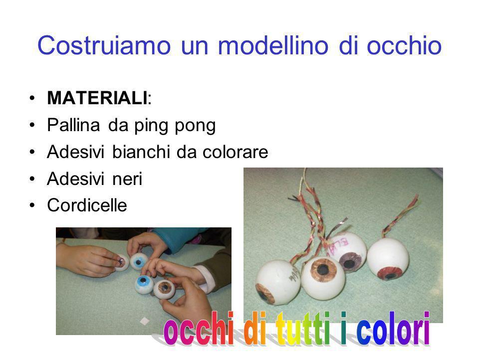 Costruiamo un modellino di occhio MATERIALI: Pallina da ping pong Adesivi bianchi da colorare Adesivi neri Cordicelle