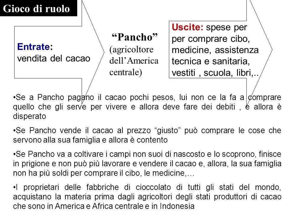 Pancho (agricoltore dellAmerica centrale) Entrate: vendita del cacao Uscite: spese per per comprare cibo, medicine, assistenza tecnica e sanitaria, ve