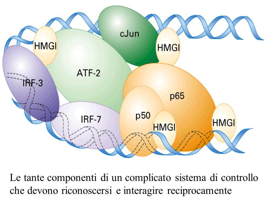 Le tante componenti di un complicato sistema di controllo che devono riconoscersi e interagire reciprocamente