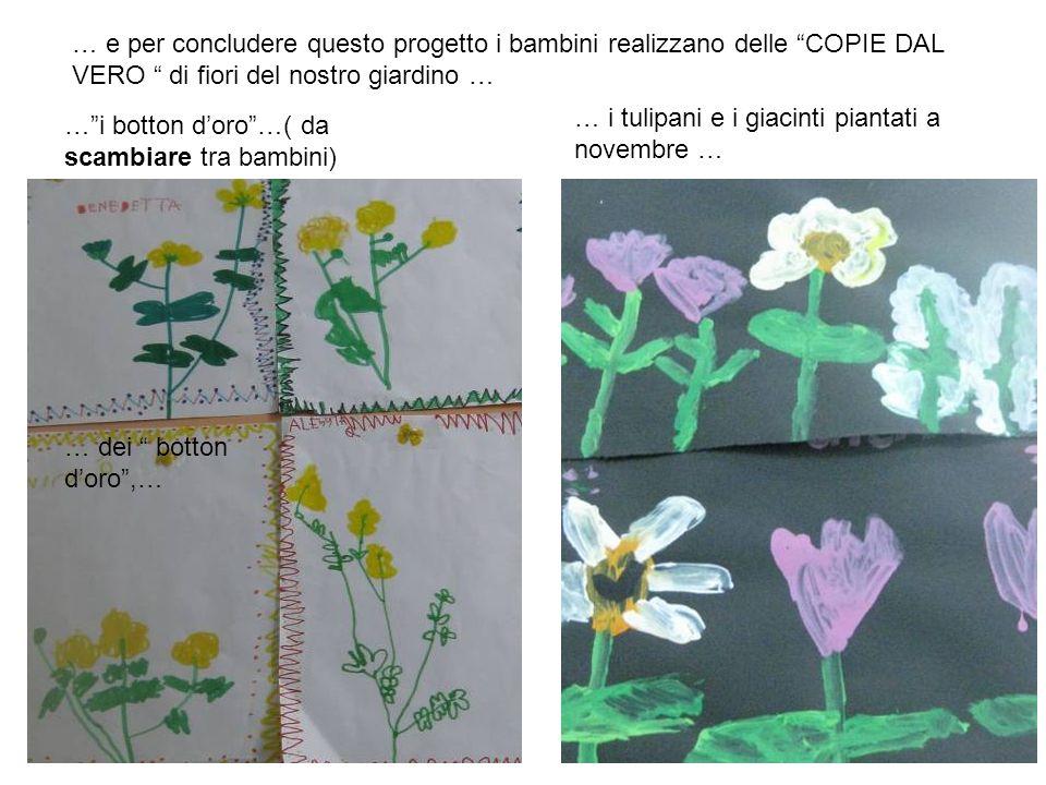 … e per concludere questo progetto i bambini realizzano delle COPIE DAL VERO di fiori del nostro giardino … … dei botton doro,… …i botton doro…( da sc