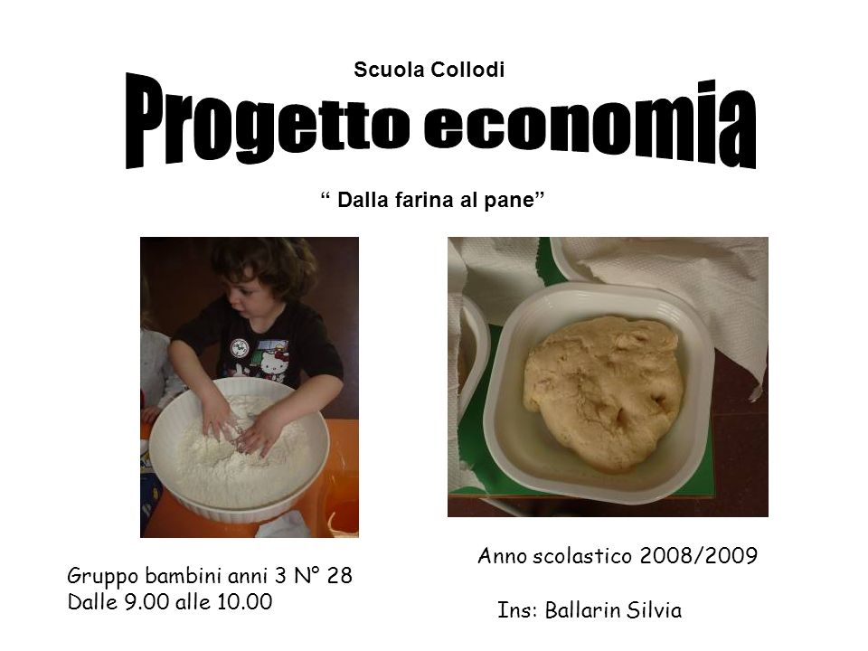 Scuola Collodi Dalla farina al pane Gruppo bambini anni 3 N° 28 Dalle 9.00 alle 10.00 Anno scolastico 2008/2009 Ins: Ballarin Silvia