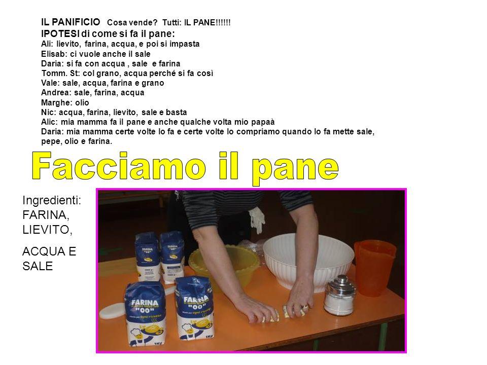 IL PANIFICIO Cosa vende. Tutti: IL PANE!!!!!.