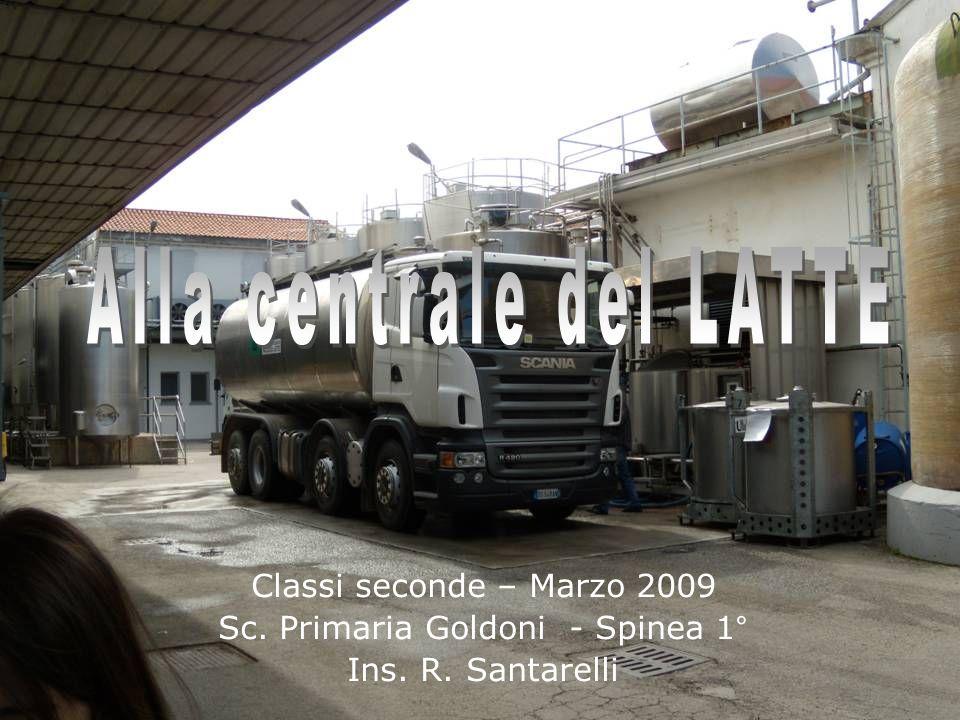 Classi seconde – Marzo 2009 Sc. Primaria Goldoni - Spinea 1° Ins. R. Santarelli