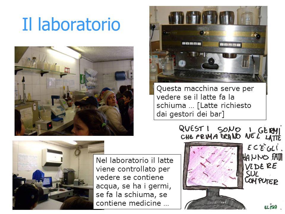 Il laboratorio Nel laboratorio il latte viene controllato per vedere se contiene acqua, se ha i germi, se fa la schiuma, se contiene medicine … Questa