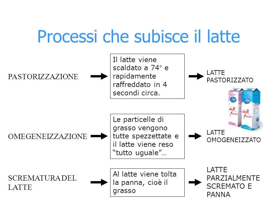 Processi che subisce il latte PASTORIZZAZIONE OMEGENEIZZAZIONE SCREMATURA DEL LATTE Il latte viene scaldato a 74° e rapidamente raffreddato in 4 secon