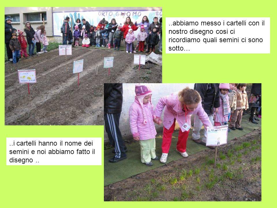 ..abbiamo messo i cartelli con il nostro disegno cosi ci ricordiamo quali semini ci sono sotto…..i cartelli hanno il nome dei semini e noi abbiamo fat