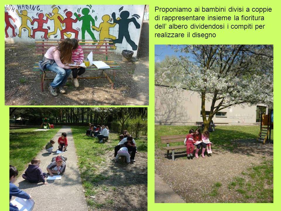 Proponiamo ai bambini divisi a coppie di rappresentare insieme la fioritura dell albero dividendosi i compiti per realizzare il disegno