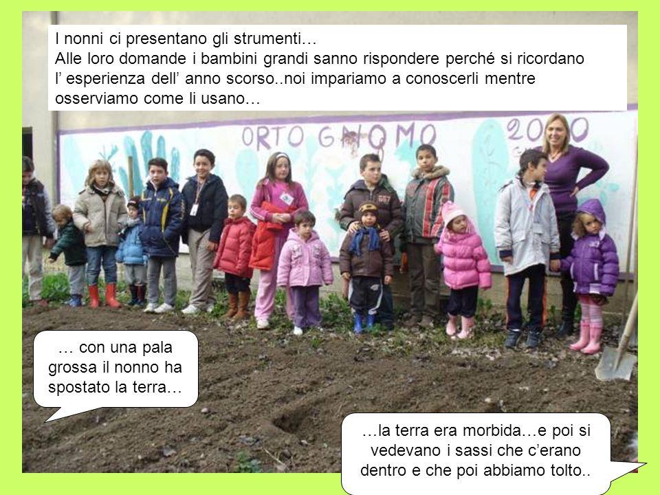 2 INCONTRO : PIANTIAMO LE CIPOLLE, L AGLIO, FRUMENTO E AVENA Mostriamo ai bambini le cipolline che metteremo nel terreno....sono rotonde e con una punta …..sono colorate..