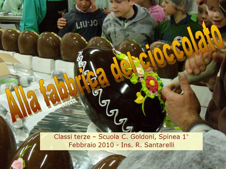 Classi terze – Scuola C. Goldoni, Spinea 1° Febbraio 2010 - Ins. R. Santarelli