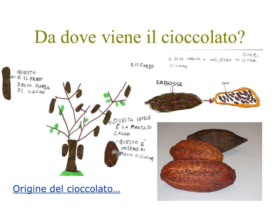 Da dove viene il cioccolato? Origine del cioccolato…