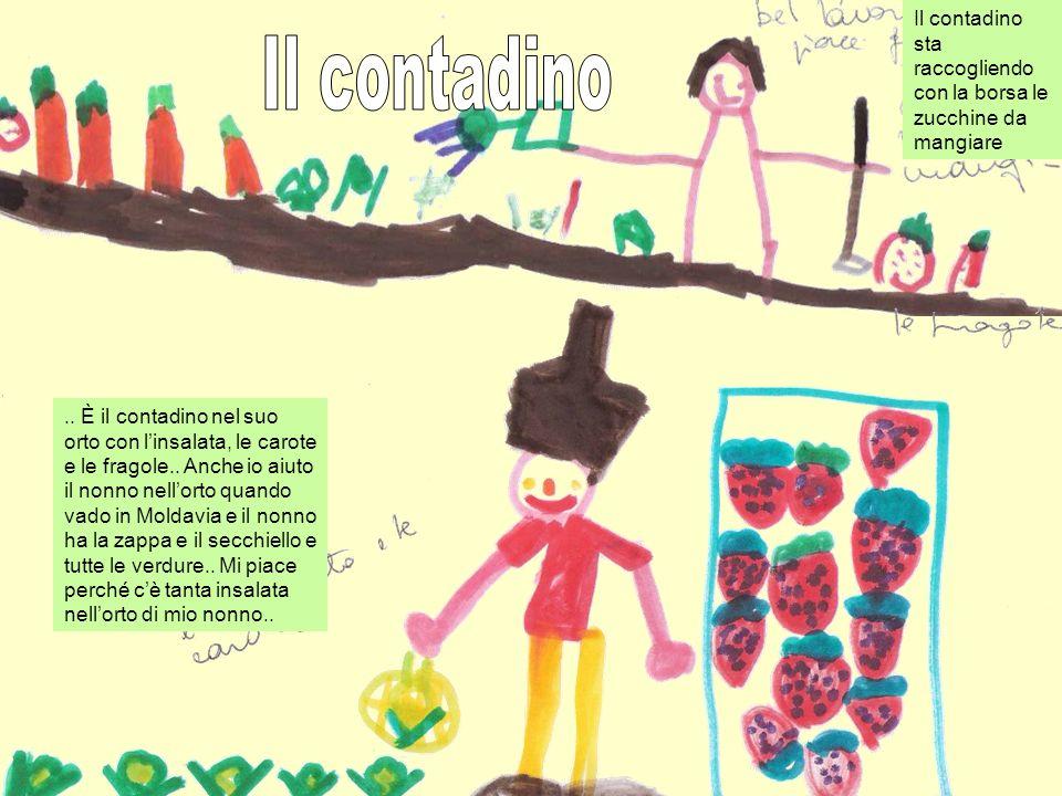 .. È il contadino nel suo orto con linsalata, le carote e le fragole.. Anche io aiuto il nonno nellorto quando vado in Moldavia e il nonno ha la zappa