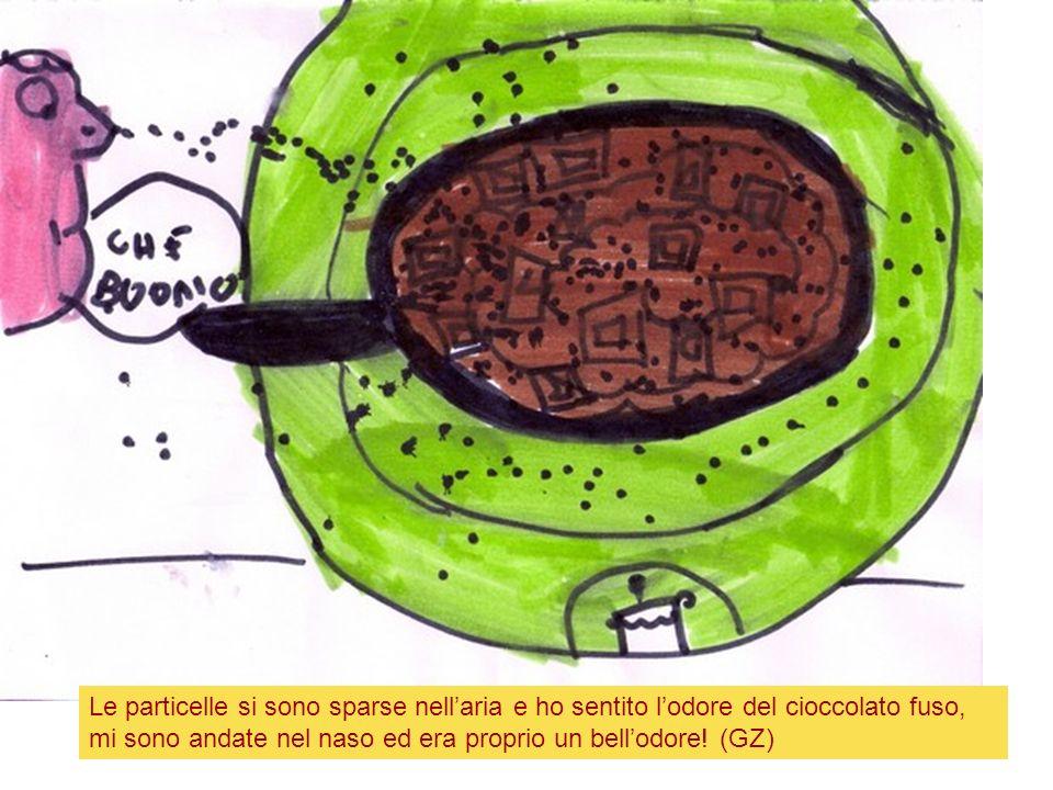 Le particelle si sono sparse nellaria e ho sentito lodore del cioccolato fuso, mi sono andate nel naso ed era proprio un bellodore! (GZ)