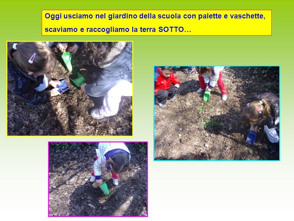 Oggi usciamo nel giardino della scuola con palette e vaschette, scaviamo e raccogliamo la terra SOTTO…