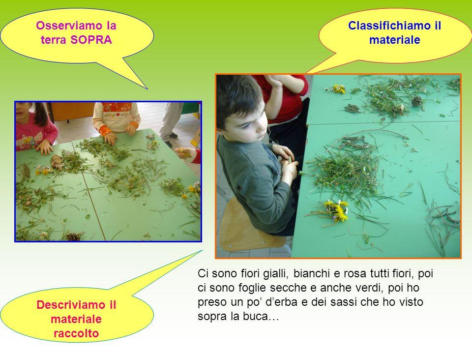 Descriviamo il materiale raccolto Classifichiamo il materiale Osserviamo la terra SOPRA Ci sono fiori gialli, bianchi e rosa tutti fiori, poi ci sono