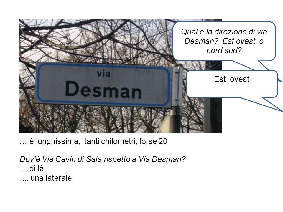 … è lunghissima, tanti chilometri, forse 20 Qual è la direzione di via Desman? Est ovest o nord sud? Est ovest Dovè Via Cavin di Sala rispetto a Via D