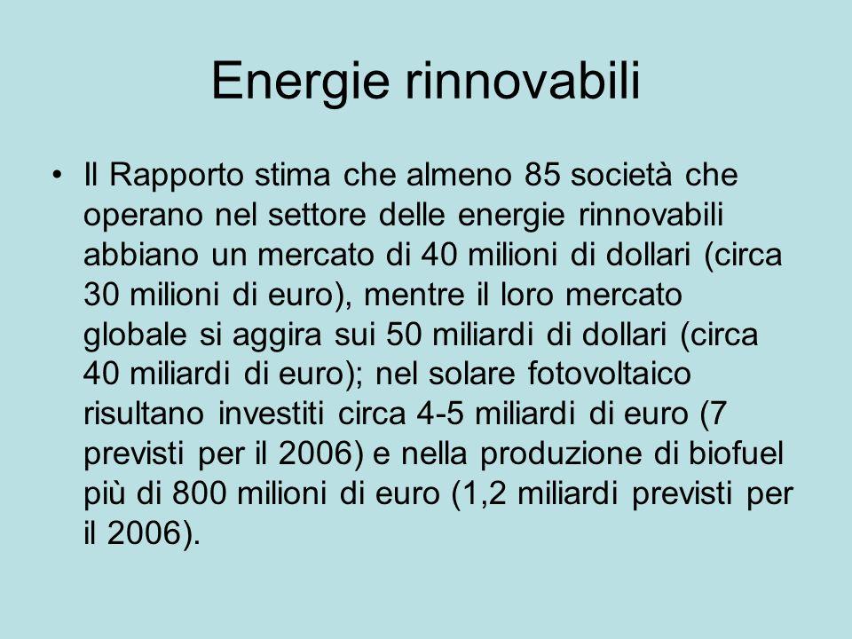 Energie rinnovabili Il Rapporto stima che almeno 85 società che operano nel settore delle energie rinnovabili abbiano un mercato di 40 milioni di dollari (circa 30 milioni di euro), mentre il loro mercato globale si aggira sui 50 miliardi di dollari (circa 40 miliardi di euro); nel solare fotovoltaico risultano investiti circa 4-5 miliardi di euro (7 previsti per il 2006) e nella produzione di biofuel più di 800 milioni di euro (1,2 miliardi previsti per il 2006).