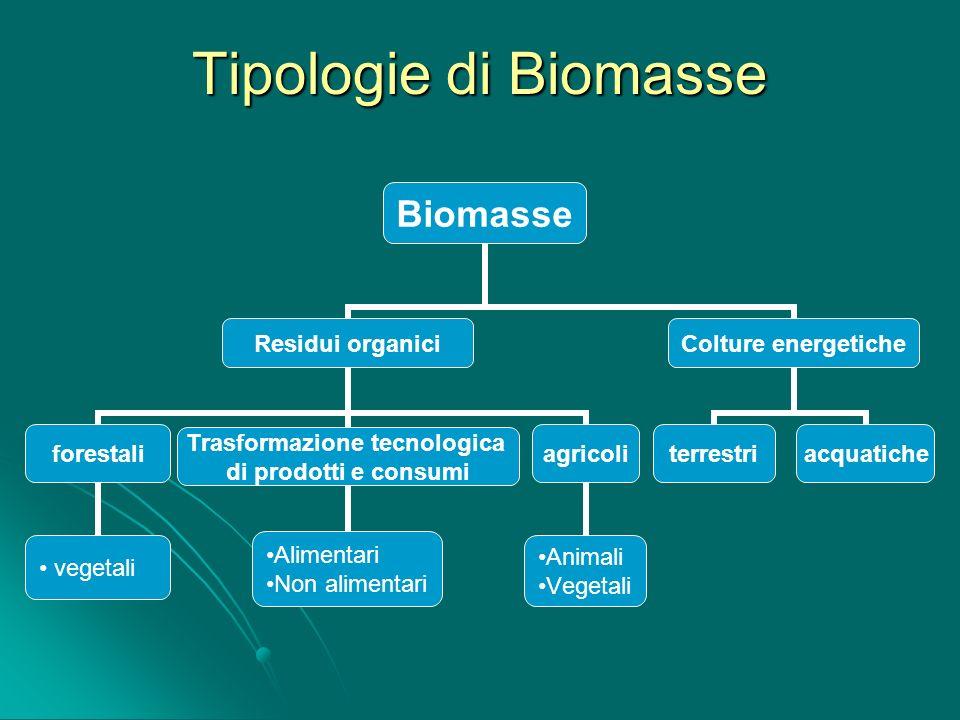 Confronto delle emissioni di CO 2 tra gasolio e biodiesel PRODOTTO g DI CO 2 PER MJ DI LAVORO PRODOTTO DAL MOTORE RIDUZIONE DI CO 2 RISPETTO AL GASOLIO (%) senza allocazione con allocazione Biodiesel da colza Biodiesel da girasole 141,38 137,44 72,36 71,60 38,1-68,3 39,8-68,7 Gasolio228,45- La stima della quantità di CO 2 assorbita da una foresta o da altre tipologie di vegetazione o International Panel on Climate Change (IPCC), 2000: per una foresta in clima temperato - assorbimento massimo pari a 0,5 t/ha.anno di carbonio (1,8 t/ha.anno di CO 2 ); o International Panel on Climate Change (IPCC), 2001: la forestazione di territori equatoriali non forestali può portare - accumulo complessivo massimo di 215 t/ha di carbonio (4,3 t/ha.anno di CO 2 ); o International Energy Agency (IEA): 40.000 km 2 di foresta per accumulare, in circa 75 anni, 1 miliardo di tonnellate di carbonio, corrispondenti a 3,6 miliardi di tonnellate di anidride carbonica.