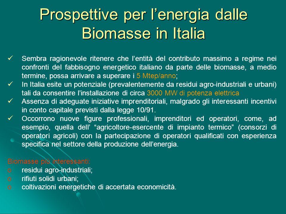 Prospettive per lenergia dalle Biomasse in Italia Sembra ragionevole ritenere che lentità del contributo massimo a regime nei confronti del fabbisogno