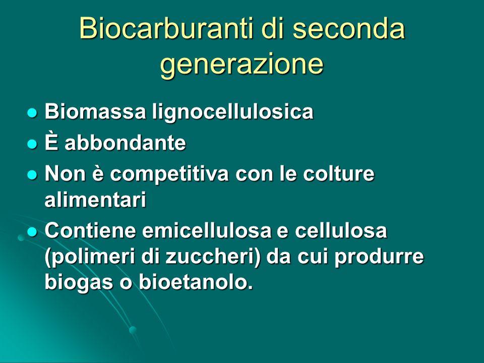 Biocarburanti di seconda generazione Biomassa lignocellulosica Biomassa lignocellulosica È abbondante È abbondante Non è competitiva con le colture al