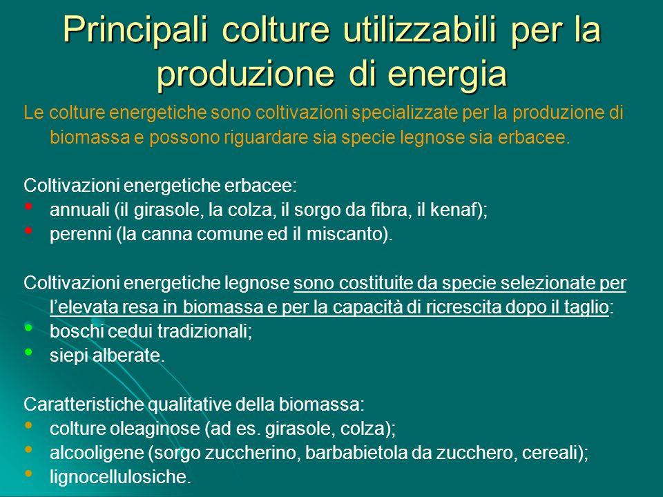 Principali colture utilizzabili per la produzione di energia Le colture energetiche sono coltivazioni specializzate per la produzione di biomassa e po