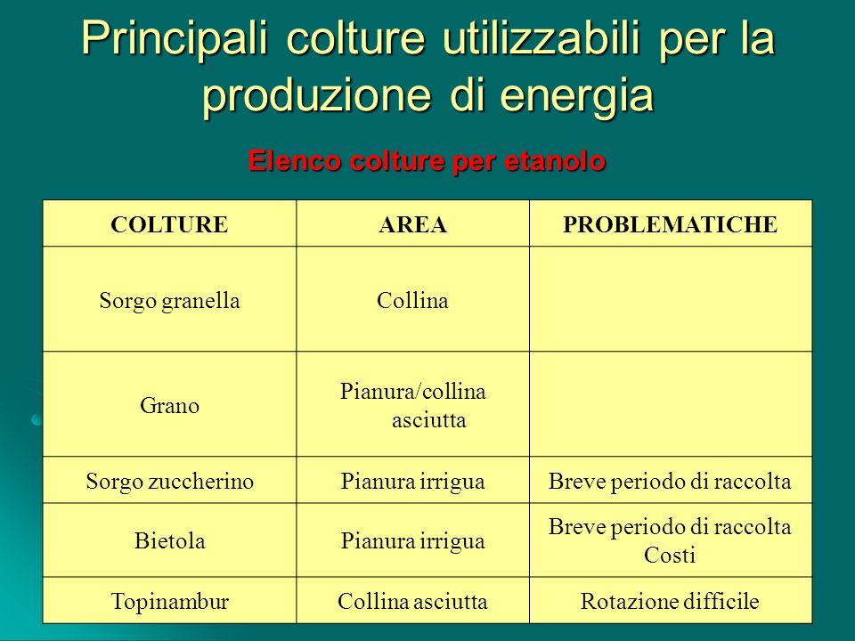 Principali colture utilizzabili per la produzione di energia COLTUREAREAPROBLEMATICHE Sorgo granellaCollina Grano Pianura/collina asciutta Sorgo zucch