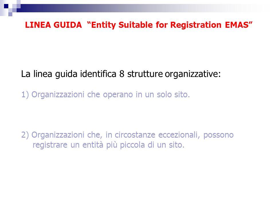 LINEA GUIDA Entity Suitable for Registration EMAS La linea guida identifica 8 strutture organizzative: 1) Organizzazioni che operano in un solo sito.
