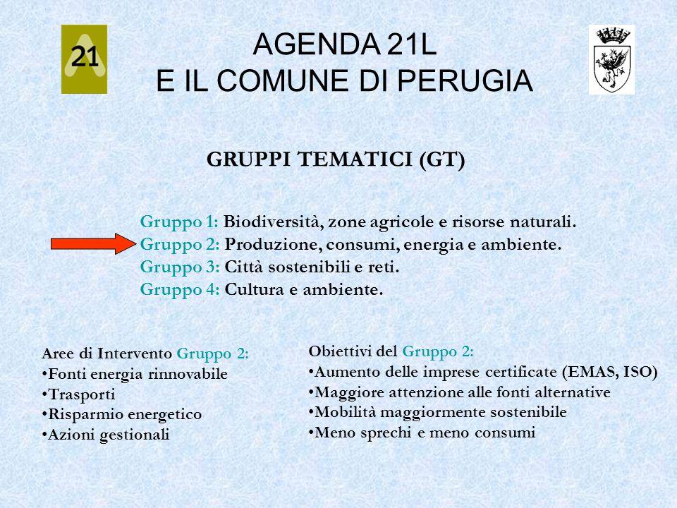 GRUPPI TEMATICI (GT) Gruppo 1: Biodiversità, zone agricole e risorse naturali. Gruppo 2: Produzione, consumi, energia e ambiente. Gruppo 3: Città sost