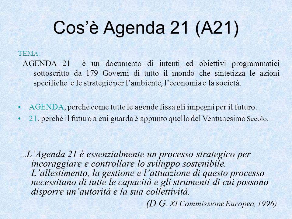 Cosè Agenda 21 (A21) … LAgenda 21 è essenzialmente un processo strategico per incoraggiare e controllare lo sviluppo sostenibile. Lallestimento, la ge