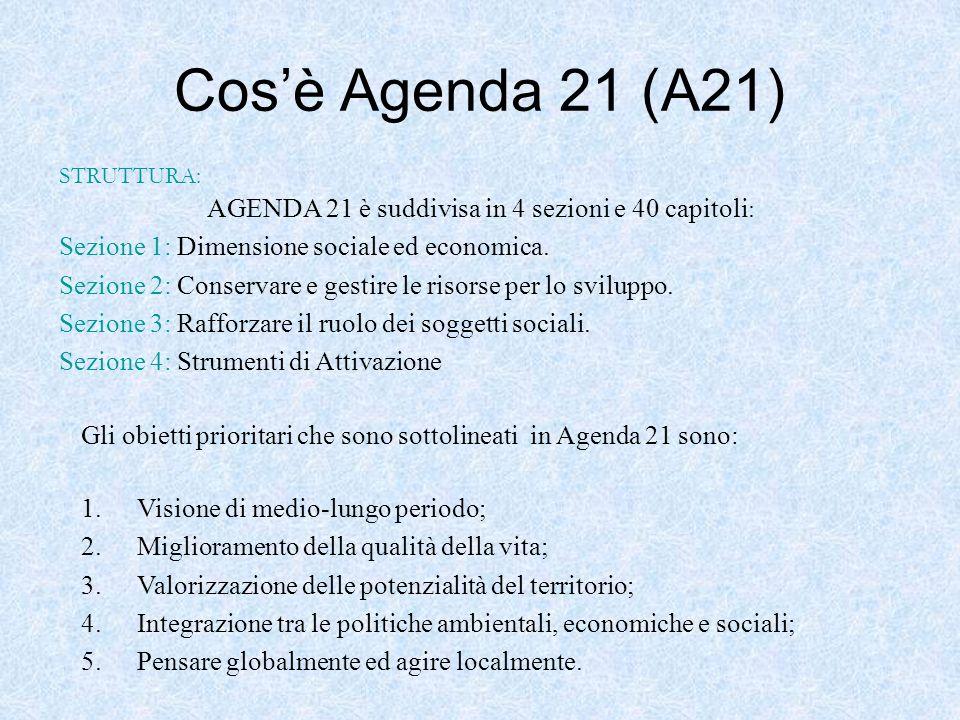 Cosè Agenda 21 (A21) AGENDA 21 è suddivisa in 4 sezioni e 40 capitoli : Sezione 1: Dimensione sociale ed economica. Sezione 2: Conservare e gestire le